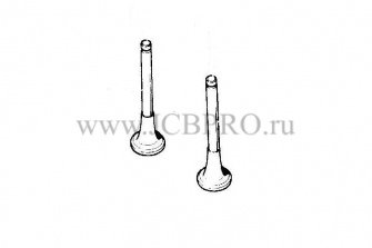 Впускной клапан AВ комплект JCB 02/200050