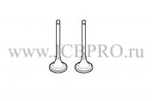Впускной клапан RG комплект JCB 02/202941